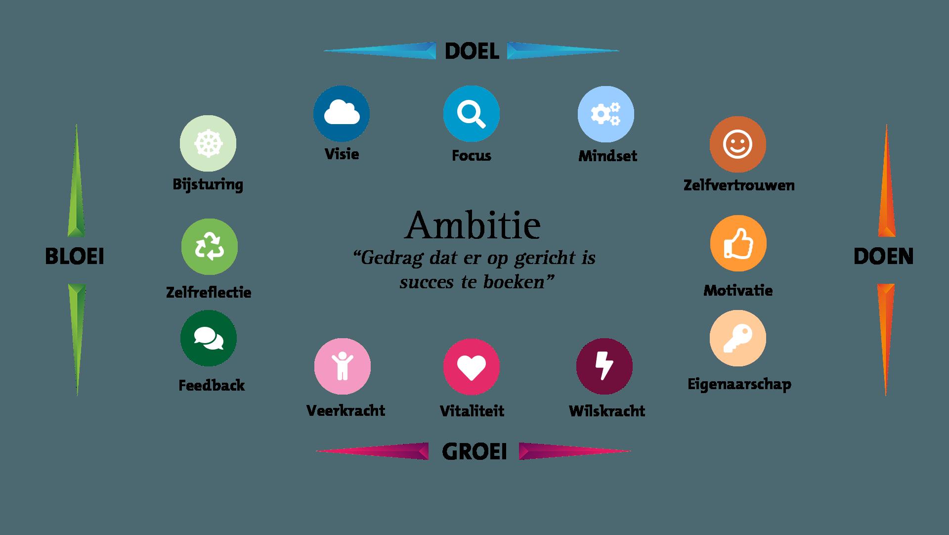 Ambitie kenmerken