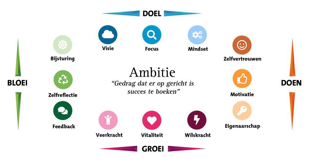 AmbitieKenmerken